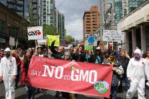 Kanaďané sice proti GMO protestují (na snímku pochod proti společnosti Monsanto ve Vancouveru), ale není jim to nic platné - jejich vláda povolila jak geneticky modifikovaného lososa, tak brambory... Foto Wikimedia Commons