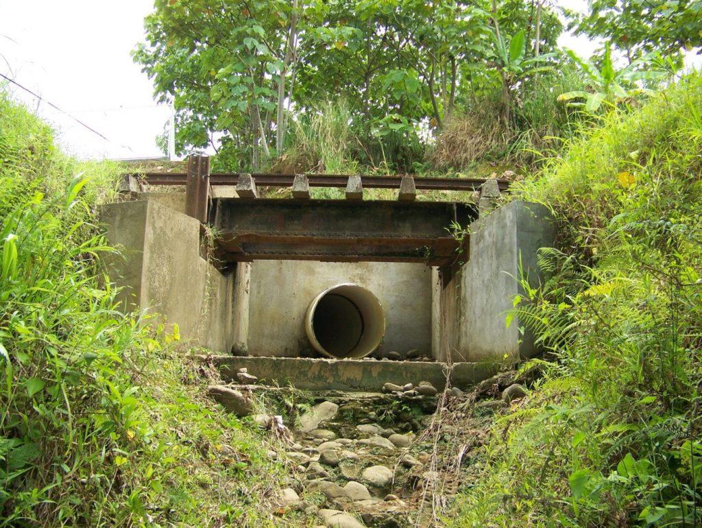 Než se ananas vypěstuje, do spodních vod se dostane tolik jedů, že to v Kostarice otráví i pitnou vodu. Foto Wikimedia