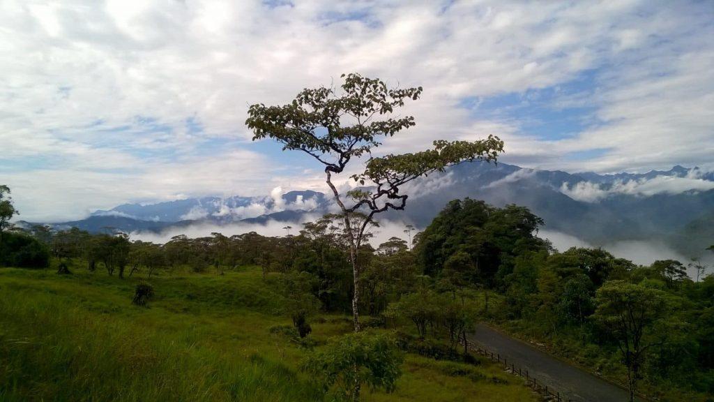 Ztracenému městu obrů se putuje impozantní ekvádorskou džunglí. Foto Miloš Matula